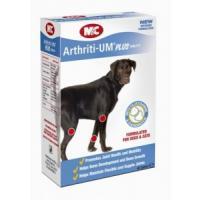 Arthriti-UM 45 Tabletten
